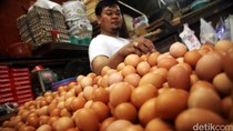 Harga Telur Naik Rp 1.000, Risiko Punya Anak Stunting Naik 6,8 Persen!