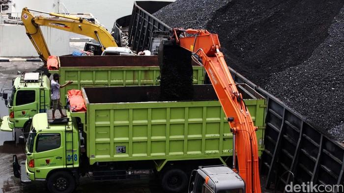Sejumlah pekerja melakukan bongkar muat batu bara menggunakan alat berat di pelabuhan krakatau bandar samudera, Cigading, Cilegon (8/3/2013). Direktur Jendral Mineral dan Batu Bara Kementerian Energi Sumber Daya Manusia (ESDM), Thamrin Shite mengatakan untuk mengendalikan produksi batu bara, pemerintah menetapkan kuota produksi secara nasional. File/detikFoto.