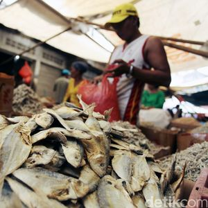 Tak Hanya Konsumsi, RI Impor Ikan untuk Bahan Baku Industri