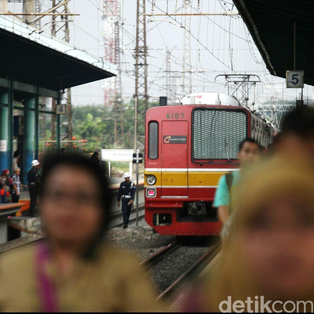 Akibat Pohon Tumbang, Perjalanan KRL Terganggu di Beberapa Jalur
