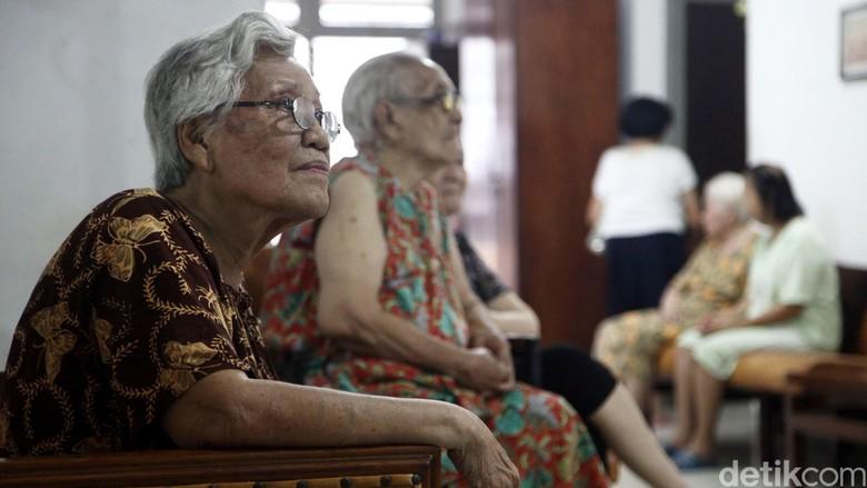 Pola asuh cucu menurut kakek dan nenek/ Foto: Grandyos Zafna