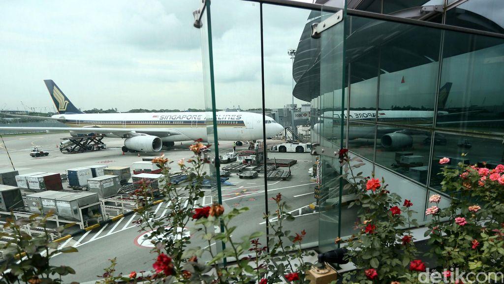 Kejar 20 Juta Wisman, Indonesia Butuh Terminal Bandara Murah