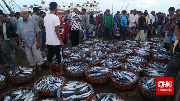 Aktivitas masyarakat di Tempat Pelelangan Ikan (TPI) Banda Aceh.