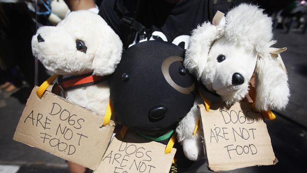 Aksi menolak konsumsi daging anjing oleh Animal Defender Indonesia.
