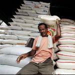 Buwas Tunda Impor Beras, Darmin: Kebijakan di Pemerintah
