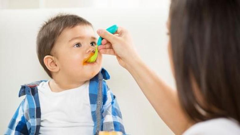 7 Panduan Berikan Daging Dalam MPASI Untuk Bayi