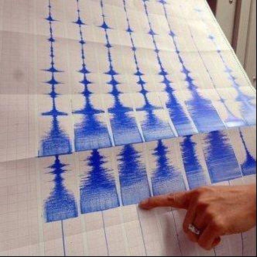 Gempa M 4,0 Terjadi di Timur Laut Labuha Maluku Utara