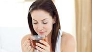 Sedang Kurangi Gula? Ini 5 Pemanis Alami dan Sehat untuk Minuman