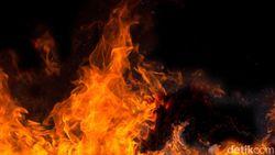 Kebakaran di Wae Wuul NTT, Polisi: Lokasi Api Jauh dari Resort