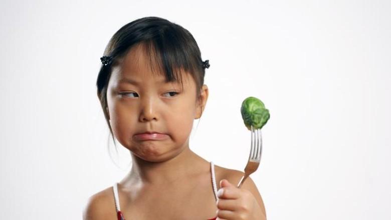 Ilustrasi anak nggak suka sayur/ Foto: admn