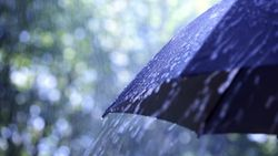 Hujan Guyur Sebagian Wilayah Jakarta, Camat dan Lurah Diminta Siaga
