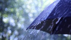Sering Merasa Mager Saat Hujan? Berikut Kemungkinan Penyebabnya