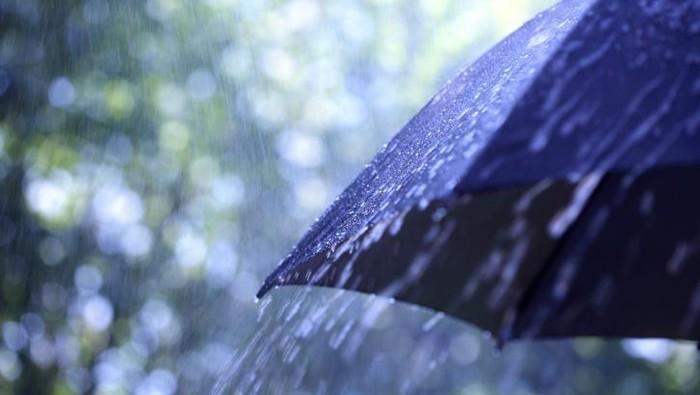 hujan rintik-rintik di payung
