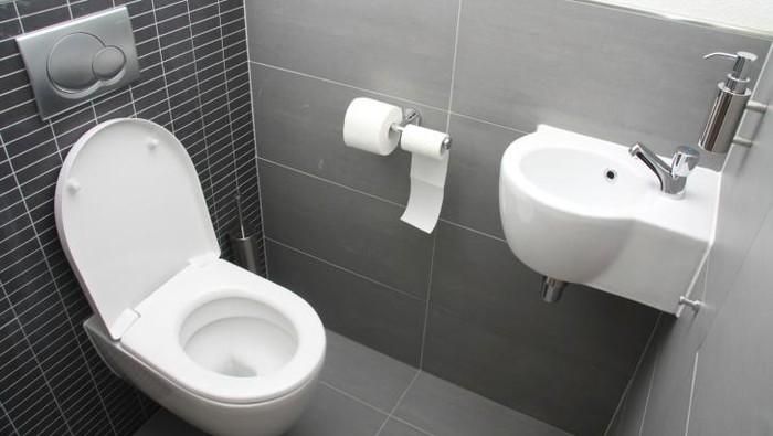 Ilustrasi toilet. Foto: Thinkstock