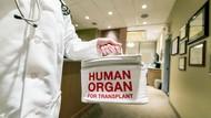 Transplantasi Organ Tubuh dalam Islam, Cek Fatwanya!