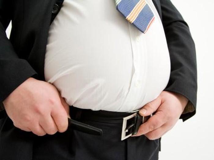 Hasil gambar untuk perut buncit
