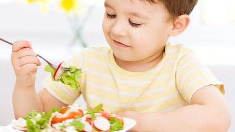 Vitamin Nafsu Makan Anak