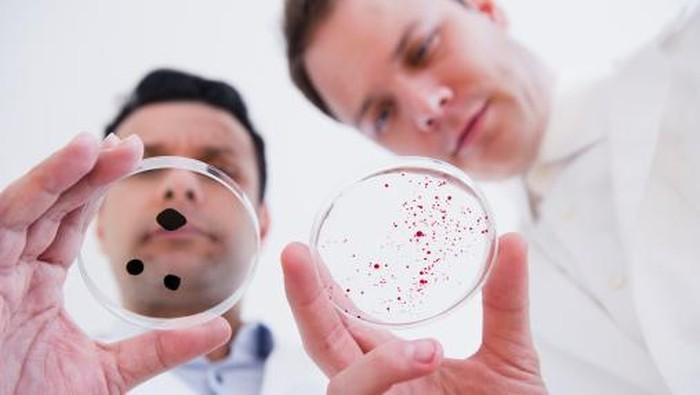 Ilustrasi para ahli melihat bakteri. Foto: Getty Images