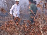 Jalan Panjang Menggugat Jokowi hingga Divonis Melawan Hukum di Kasus Karhutla