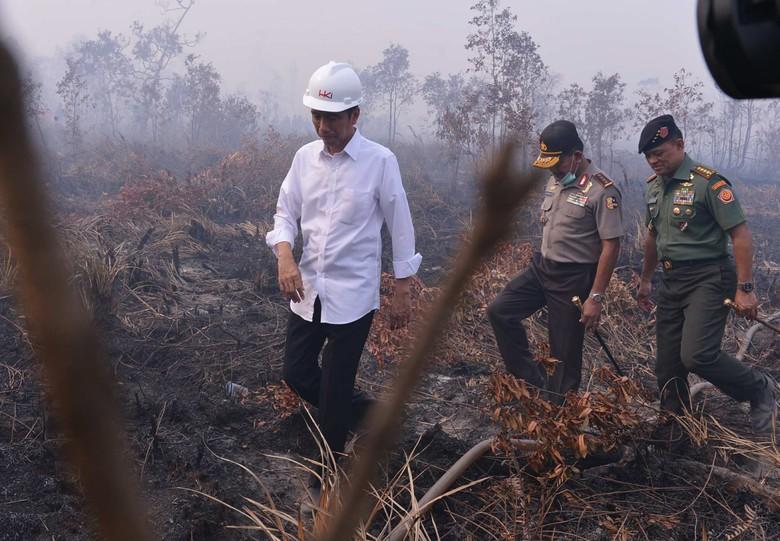 Jokowi Divonis Melawan Hukum, KLHK Tegaskan Komitmen Perangi Karhutla