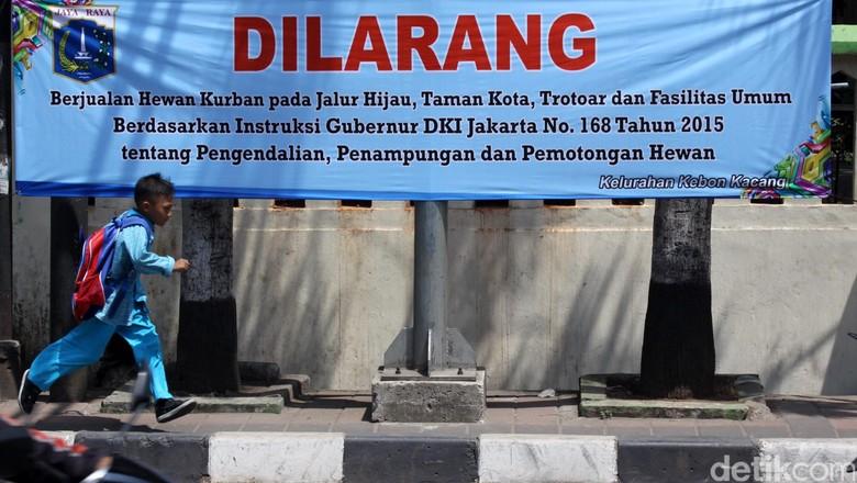 Begini Larangan Jual Hewan Kurban di Trotoar dan Jalur Hijau di Jakarta
