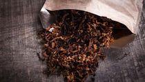 Ada Tiga Hal yang Membuat Anak Terpapar Rokok