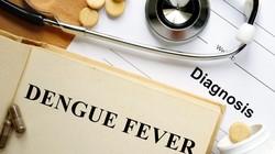 Catat! Kalau Belum Sampai Perdarahan, Namanya Demam Dengue Bukan DBD