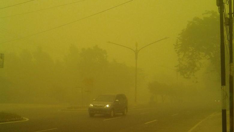 Bencana Kabut Asap di Palangkaraya, Sudah 2 Bulan Warga Tak Lihat Matahari