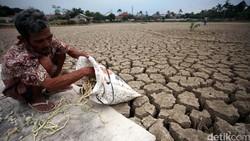 El Nino, Bocah Lelaki yang Membuat Sumur Kita Kerontang