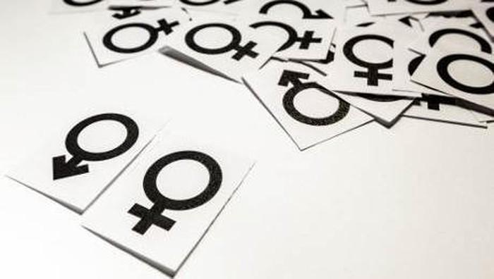 ilustrasi jenis kelamin