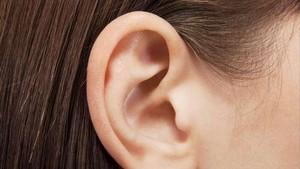 Bagian Belakang Telinga Berbau Mirip Keju? Ini Dia Penyebabnya