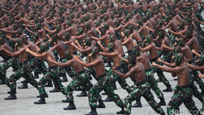 Ilustrasi TNI AD (Foto: Agung Pambudhy/detikcom)
