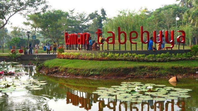 taman tabebuya yang keren di Jaksel