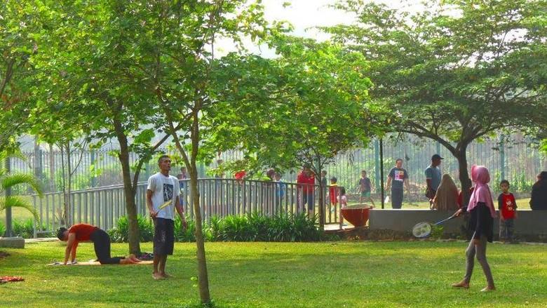 Taman Tabebuya di Jagakarsa, Jakarta Selatan (Fitraya/detikcom)