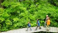 Sekeluarga Tewas Saat Trekking, Diduga karena Keracunan