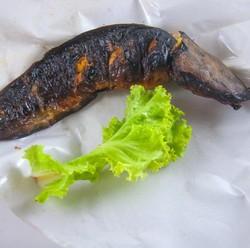 Konsumsi Ikan Lele Bisa Bikin Seseorang Lebih Berstamina, Benarkah?