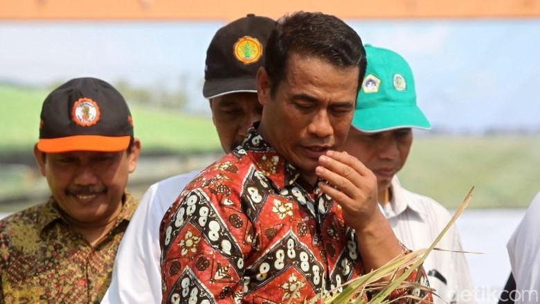 Menteri Amran, Aman dari Reshuffle Setelah Dipuji Jokowi