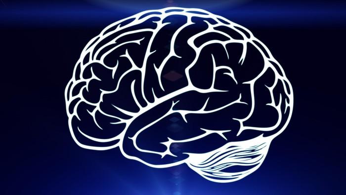 Foto: ilustrasi saraf otak