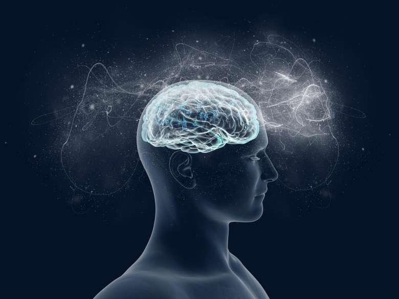 Penelitian yang diterbitkan di Translational Psychiatry menunjukkan bahwa bermain games terlalu sering bisa mengubah otak. Banyak bermain games yang mengandalkan inti kaudatus semakin sedikit mereka menggunakan hippocampus, sebagai akibatnya hippocampus kehilangan sel-sel dan mengalami atrofi atau penyusutan. (Foto: Thinkstock)
