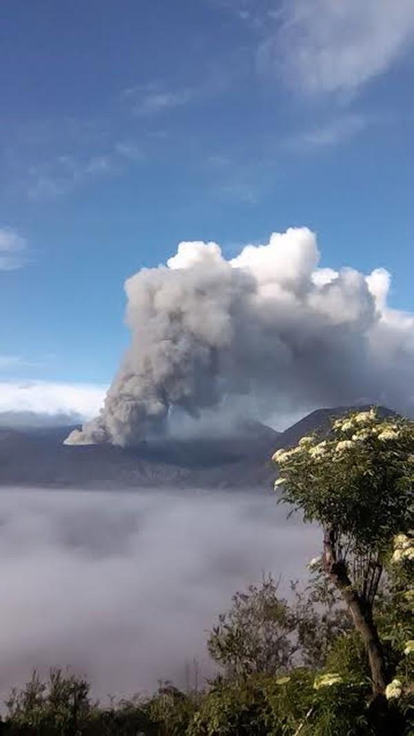 Lokasinya Gunung Semeru berdekatan dengan gunung lainnya seperti Bromo Foto: istimewa/TNBTS