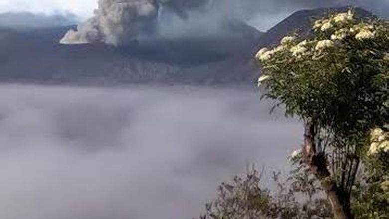 Pendaki Asal Swiss Dilaporkan Hilang di Gunung Semeru