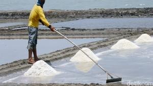 Jokowi Restui Usulan Impor Garam Industri Tak Lagi Lewat Susi
