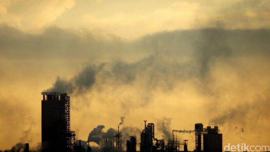 Orang Terkaya Dunia Sumbang Rp 1,4 Triliun untuk Kurangi Karbon