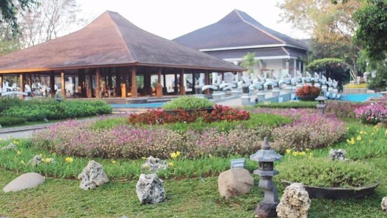Taman Bunga Keren ini Ada di Purwakarta, Jangan Diinjak Ya Buat Selfie!