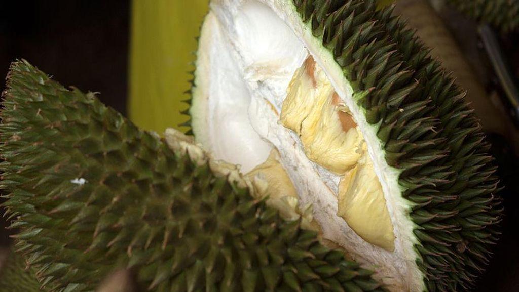 Cerita Bau 2 Ton Durian Tunda Penerbangan Sriwijaya Air