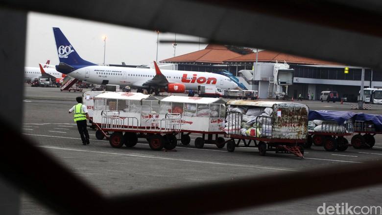 Ilustrasi bagasi maskapai Lion Air (Hasan Al Habshy/detikcom)