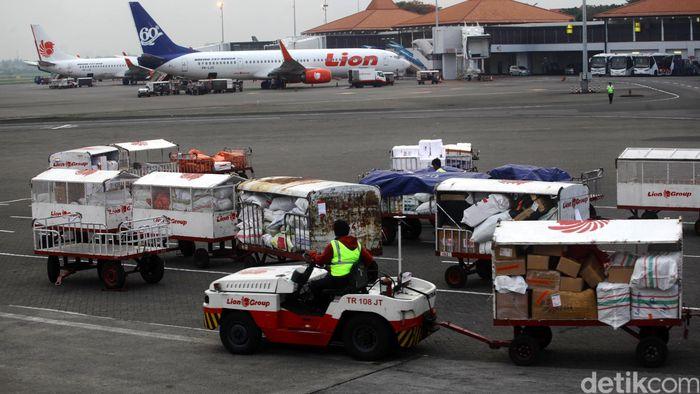 Pungut Tarif Bagasi Lion Citilink Harus Jamin Tak Ada Tikus Bandara