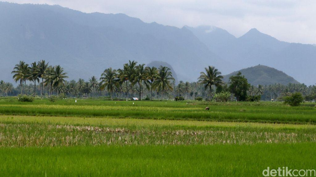 DPRD Jabar Usul Jutaan Hektar Lahan Tidur Milik Pusat Dikelola Warga