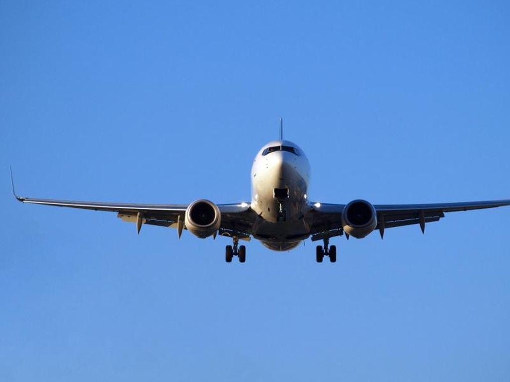 Ilustrasi pesawat (Thinkstock)
