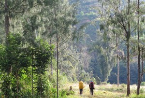Adventure Indonesia di Bawah Malaysia, Ini Kata Pengamat Pariwisata